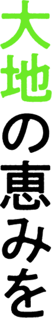 丸進青果株式会社|野菜・果物の専門商社。-愛知県 名古屋 市中央卸売 ...